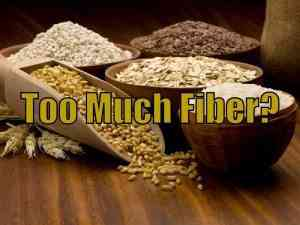 Rider Nutrition: Too Much Fiber