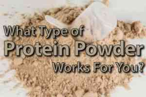 Rider Nutrition: What Types of Protein Powders Will Work For You?