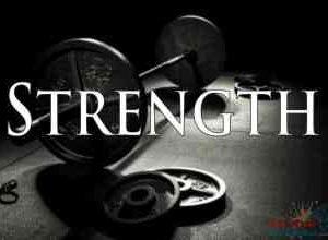 Rider Fitness: Strength Training