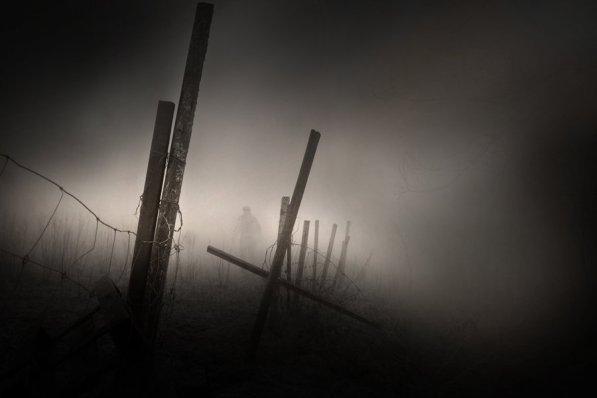 Misty Landscapes (8)