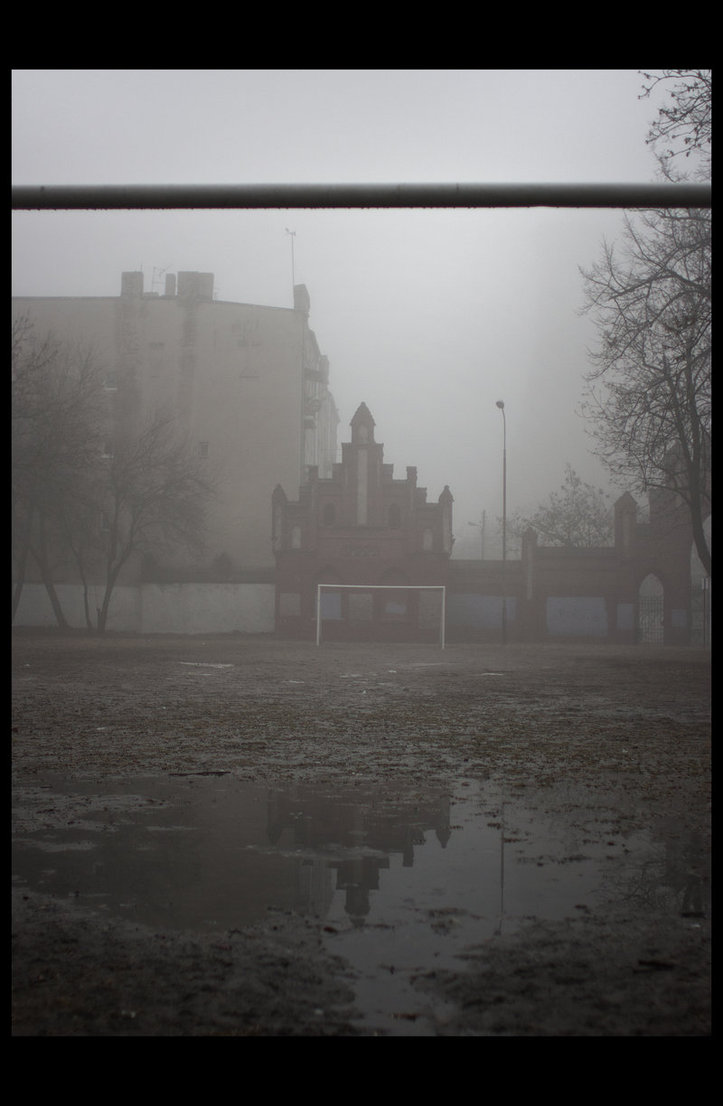 misty mysterious (10)