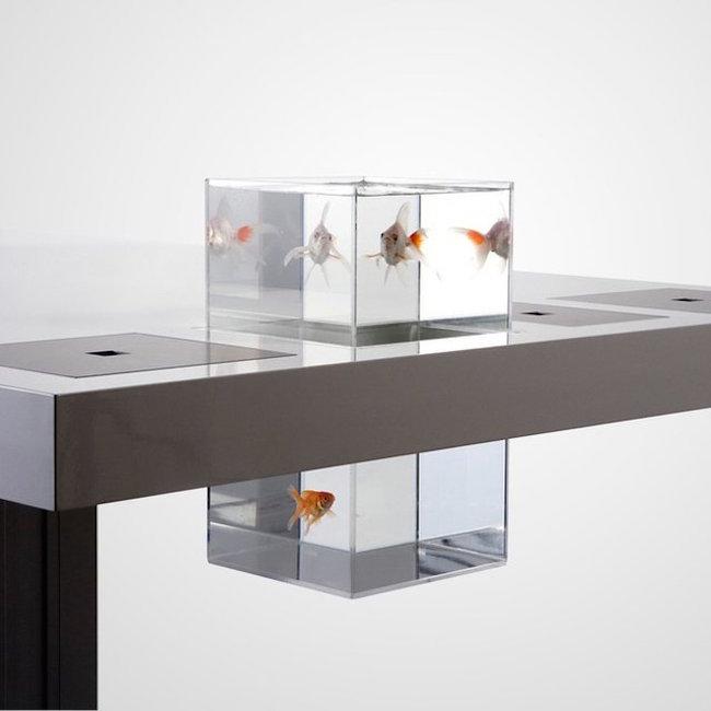 Milk-Aquarium
