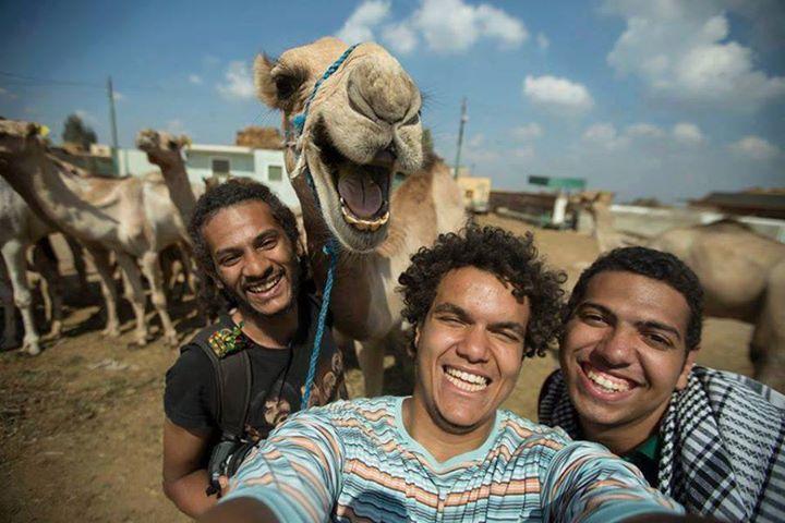 The happy camel selfie