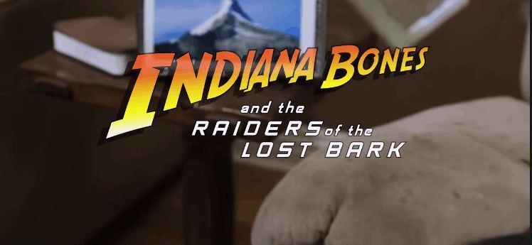 Indiana Bones Raiders of the Lost Bark