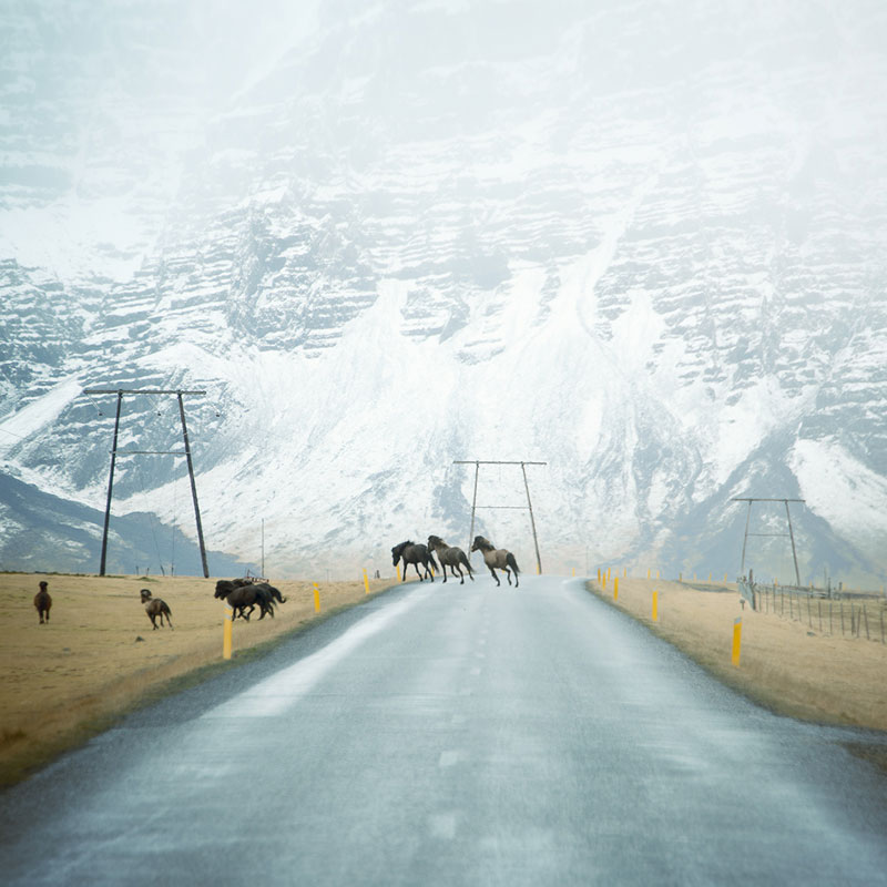 Less Travelled Roads From Around the World