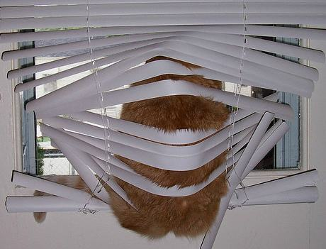 behind-the-blinds9-1