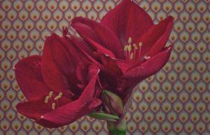 flower timelapse