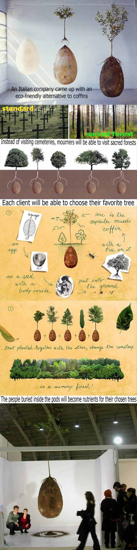 Eco-Friendly Alternative To Coffins By Italians