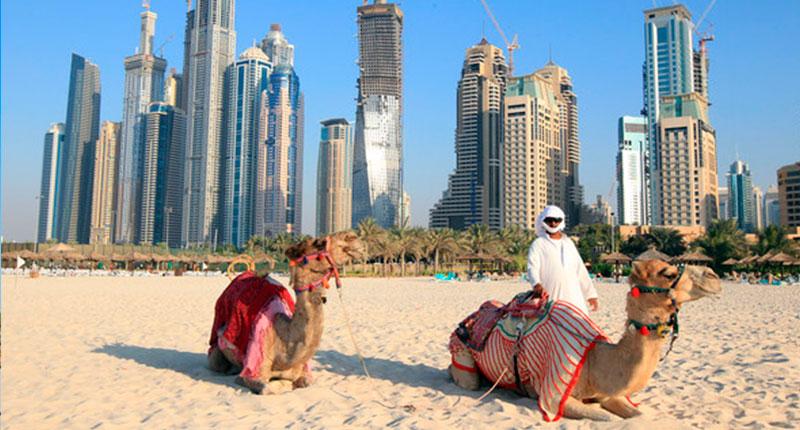 Dubai Wealth (26)