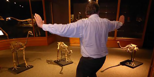 zookeepers-recreating-jurassic-world-raptor-scene-12__605