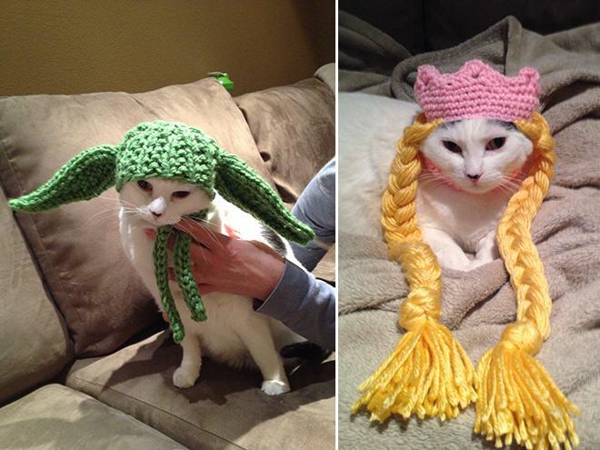 Animals Wearing Adorable Crochet Hats