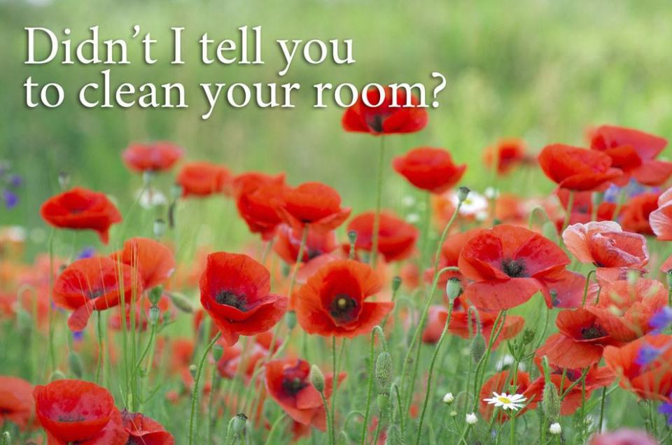 If Whatever Moms Say Were Motivational Posters