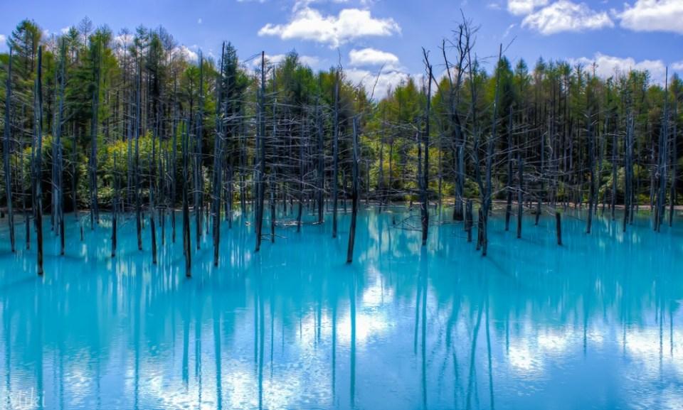 Blue Pond, Hokkaido, Japan