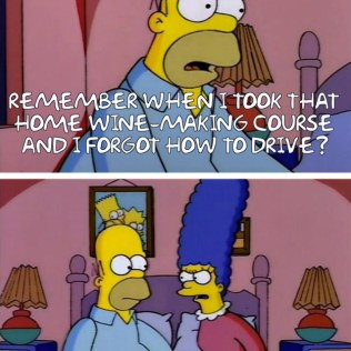 Homer Simpson Quotes (26)