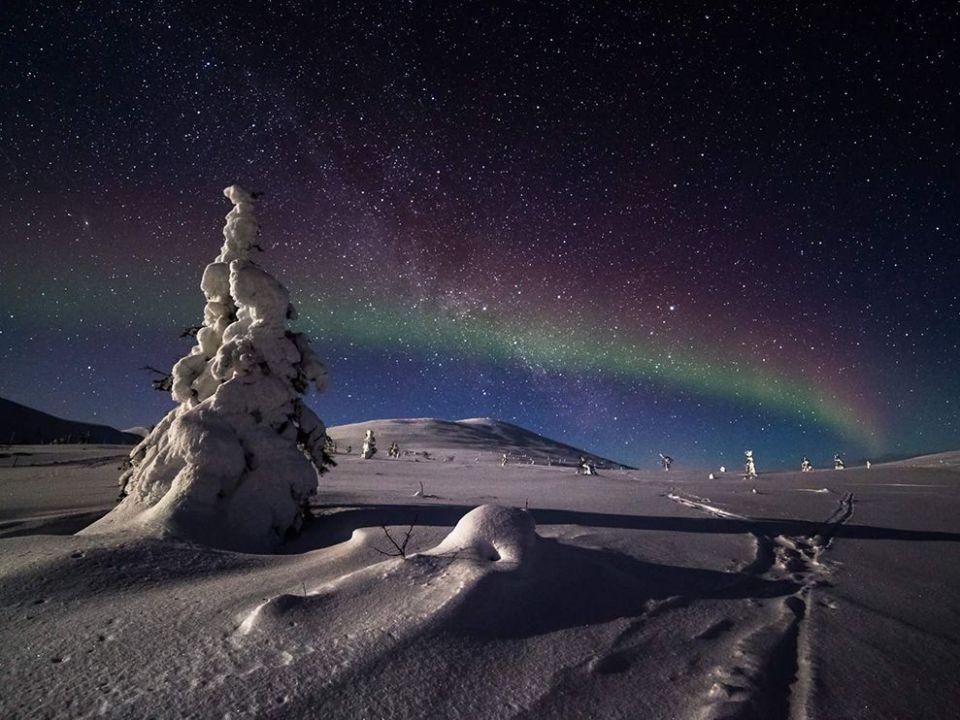 Magical Night in Lapland