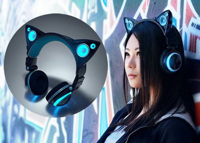Cat Ear Headphones/Speakers