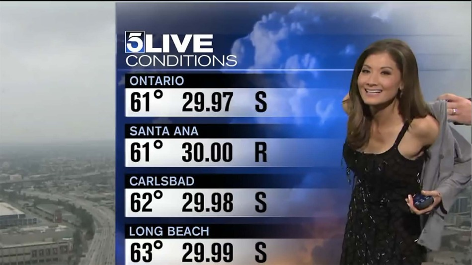 Revealing Dress Forced Reporter To Cover Up On Live TV