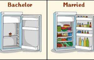 Bachelor Life Vs Married Life