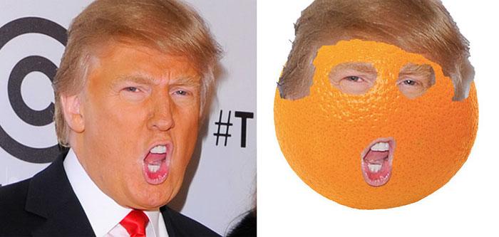 things looks like donald trump (11)