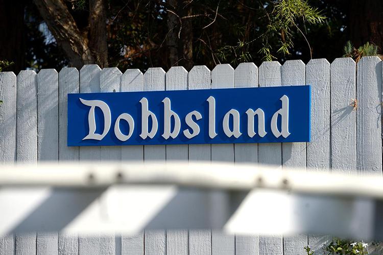 Disneyland Themed Amusement Park