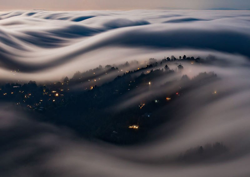 Fog Waves