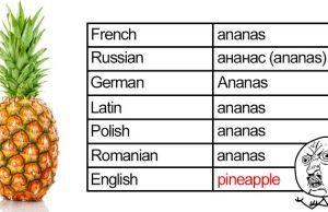 English Language Is The Worst