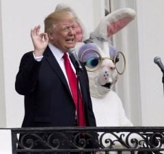 Trump, Easter Bunny