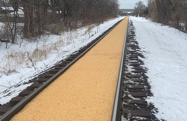 Corn Spilled All Over the Tracks