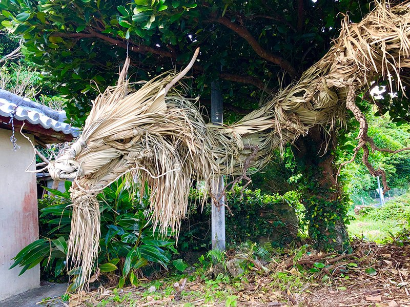 Dragon Made From Palm Tree Leaves