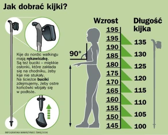 fizjoterapia częstochowa wysokość kijków donordic walking - Kijki doNW