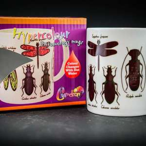 Colour Change Entomology Mugs