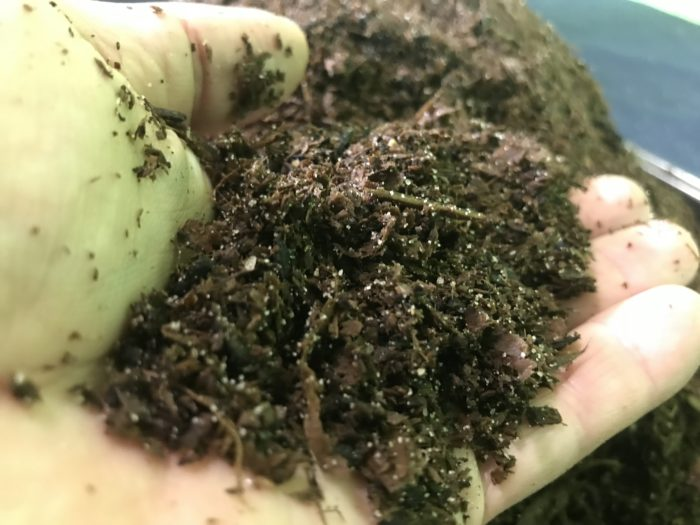 Build a simple erosion model science experiment - soil with different texture