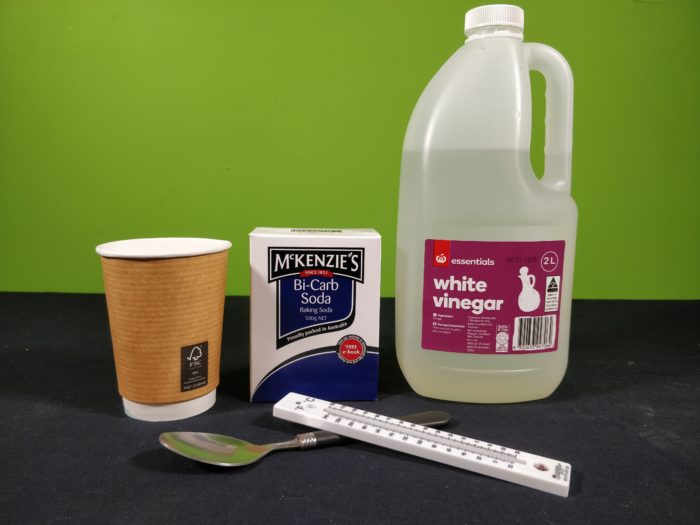 Materials needed for the endothermic reaction experiment showing vinegar, bicarbonate soda, a thermometer, a cup and a spoon