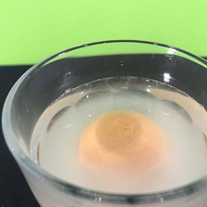 An egg floating in salt water in a glass (overhead view)