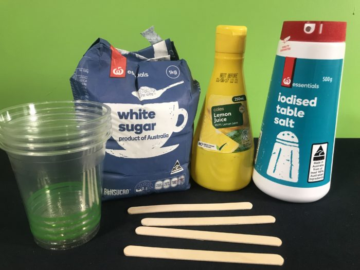 Test your taste buds science experiment - materials needed