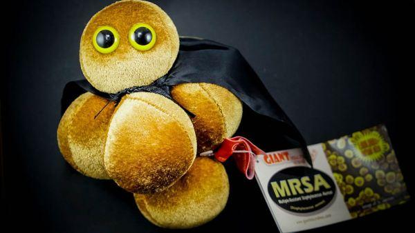 Giant MRSA plush toy_2