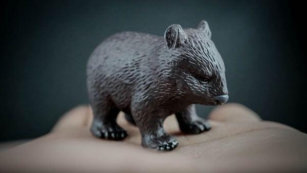 Common wombat replica