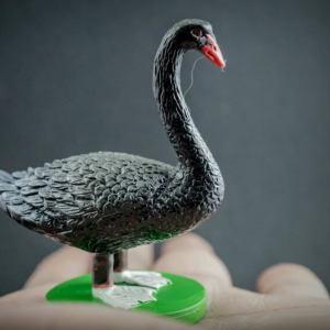 Black Swan replica