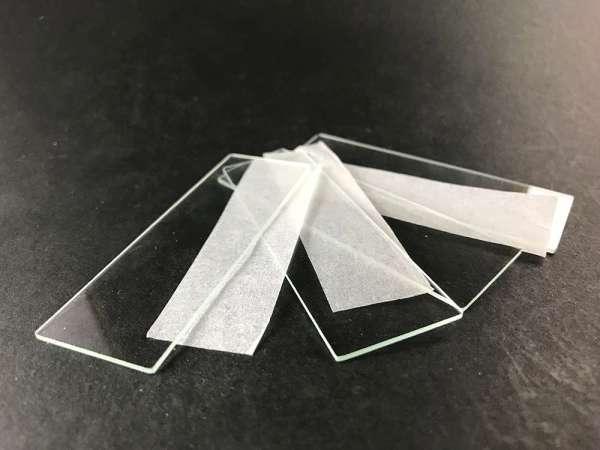 glass slides sitting on table