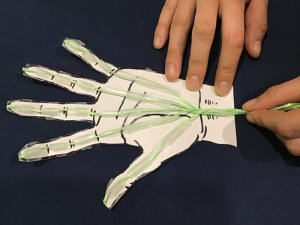 Strings of the paper hand model getting pulled so the fingers can move