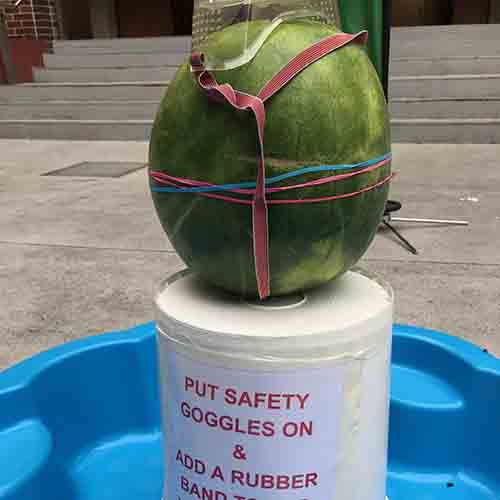 A watermelon sitting on an upturned white bucket with a couple of rubbernads around it and safety glasses sitting on top