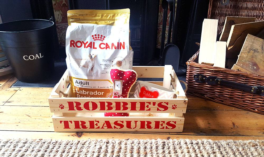 robbie-treasure-box