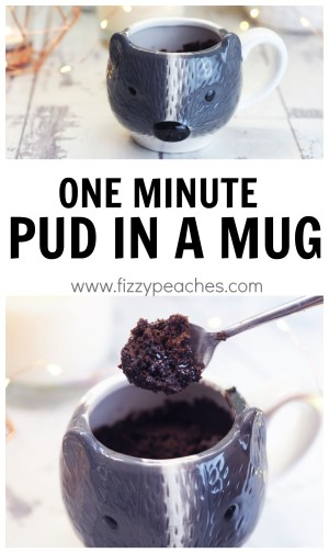 One Minute Pud in a Mug