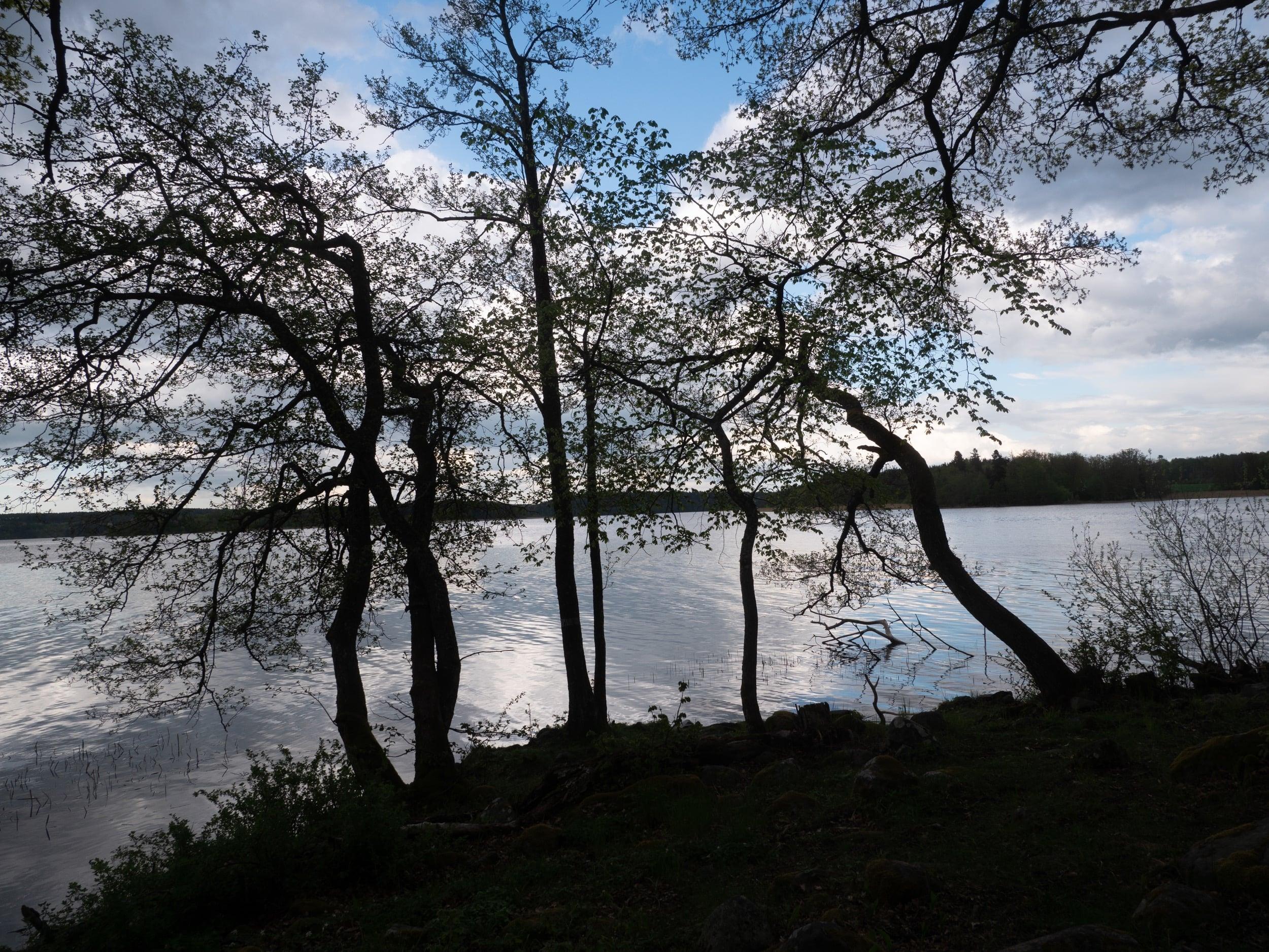Nybylund utsikt över vattnet