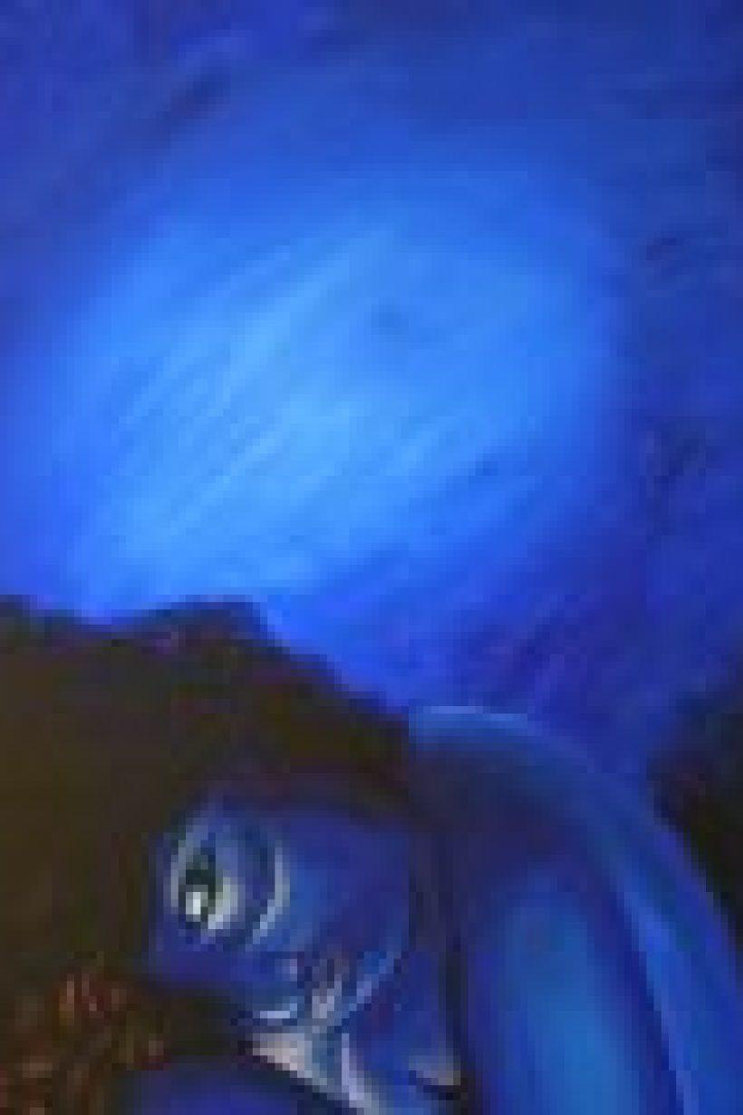 Blue Lady - acrylic on canvas