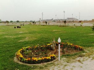 Nayab City Multan Central Park spring flowers (1)