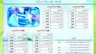 Hawksbay Scheme 42 Karachi Brochure (11)