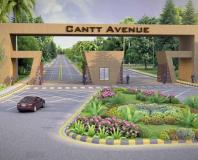 Cantt Avenue Multan - Main Gate