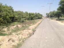 Fatima Jinnah Town Multan G Block - 17 Kassi Minor Road 2