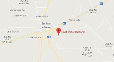Royal Orchard Multan, Sahiwal and Sargodha - Location Map